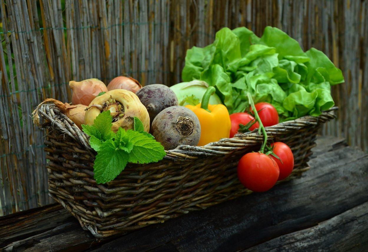 panier de légumes, circuits courts